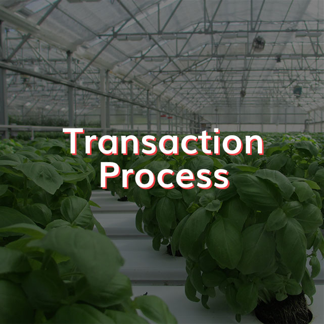 Transactions Process